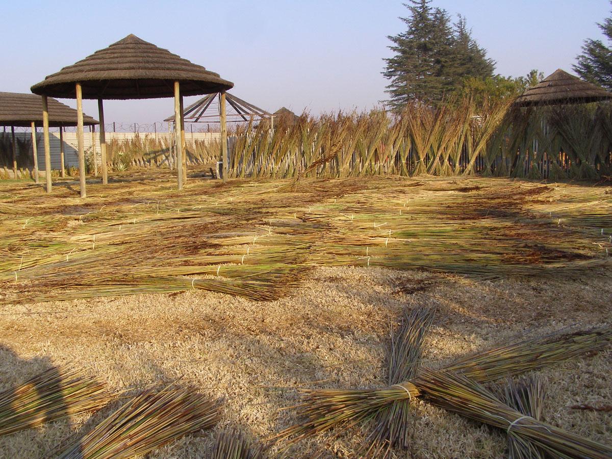 Rieten daken Brabant | Rietdekkersbedrijf Corné Daemen